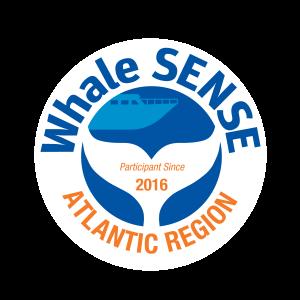 Whale Sense Logo